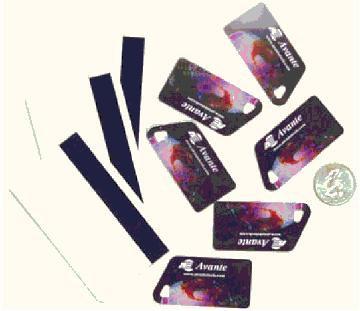 Card Key Fob Sample