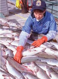 fda-fisherwoman-200
