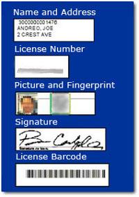 registration-db-info-200